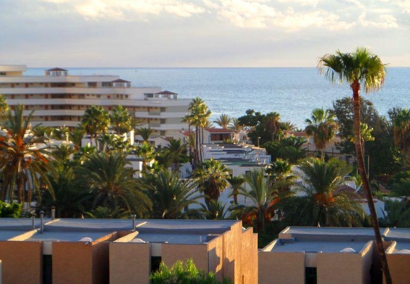 Estudio en Venta en Playa de Las Americas – 612-667 Ponderosa